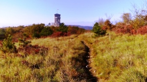 KRAS KROS TRAIL RUN - sul altopiano il percorso prosegue su sentieri su' e giu'. Sullo sfondo il monumento di Cerje